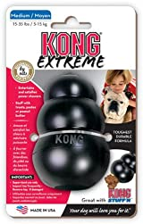 Kong EXTREME MEDIUM Rubber Chew Toy For Dogs - World's Best Dog Toy