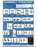 Dumbbell Exercises-Lower Body/Core/Chest & Back Laminated (Poster)
