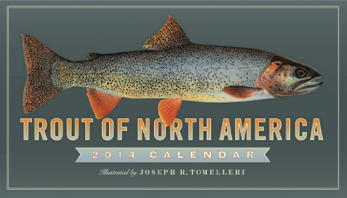 Trout of North America 2014 Wall Calendar