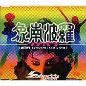 象南波羅~ゾナパラ~WHY!パラパラ・リミックス