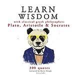 Learn Wisdom with Classical Greek Philosophers: Plato, Aristotle and Socrates |  Plato, Socrates, Aristotle