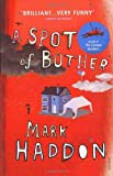 A Spot of Bother (0099506920) by Haddon, Mark