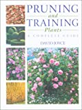 Pruning and Training Plants: A Complete Guide