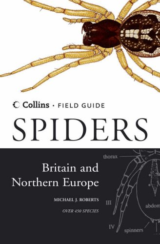 spiders-of-britain-and-northern-europe-collins-field-guide