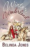 Winter Wonderland: (LoveTravel Series)