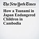 How a Tsunami in Japan Endangered Children in Cambodia | Donald G. McNeil Jr.