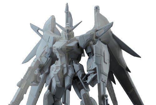 RG 1/144 ZGMF-X42S デスティニーガンダム (機動戦士ガンダムSEED DESTINY)