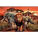 African Kingdom Poster Poster Print, 36x24