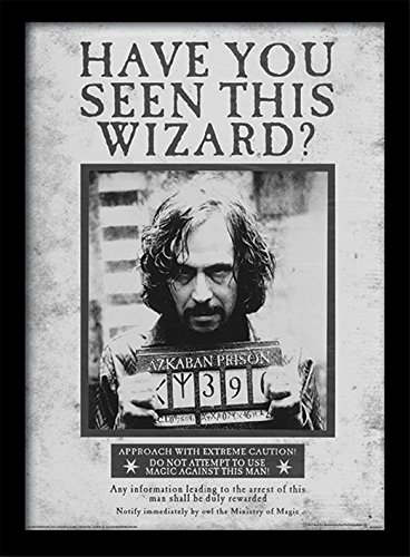 harry-potter-sirius-wanted-framed-print-30-x-40-cm