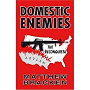 Domestic Enemies: The Reconquista (The Enemies Trilogy)
