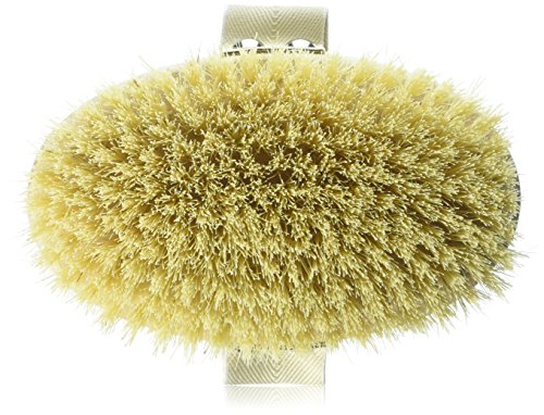 Hydrea Professional Dry Skin Body Brush with Cactus Bristles (Firm/Extra Firm Bristles) by Hydrea London (Hot Dog Curling Iron compare prices)
