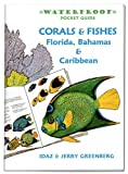 Waterproof Pocket Guide book ~ Coral & Fishes ~ Florida, Bahamas & Caribbean
