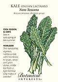 Kale Italian Lacinato Nero Toscana