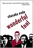 Wonderful Fool (Peter Owen Modern Classic)