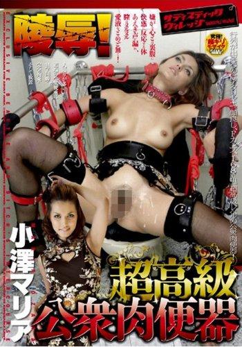 陵辱!超高級公衆肉便器 小澤マリア [DVD]