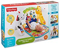 Fisher-Price Newborn-to-Toddler Play Gym from Fisher Price