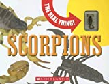 Scorpions (Real Thing) (0439787939) by Packard, Mary
