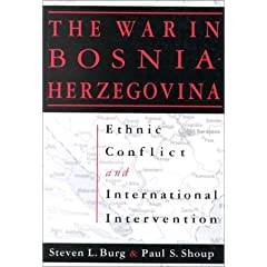 The War in Bosnia-Herzegovina: Ethnic Conflict and International Intervention