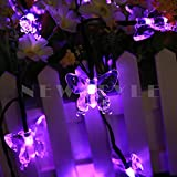 NEWSTYLE 24.6FT 7.5M 40 LED 8 Modes Butterfly Solar Powered Outdoor String Lights For Outdoor - Gardens - Homes - Wedding - Christmas Party - Waterproof (Purple Color)