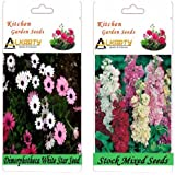 Alkarty Dimorphotheca White Star And Stock Mixed Seeds Pack Of 20 (Winter)