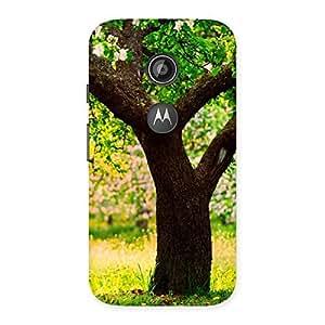 New Tree Back Case Cover for Moto E 2nd Gen
