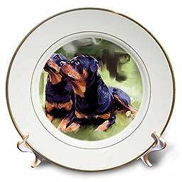 3dRose cp_4374_1 Rottweiler Porcelain Plate, 8-Inch