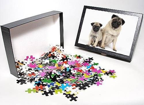 Photo Jigsaw Puzzle Of Dog. Pug ( Fawn ) With 7 Week Old Puppy front-898403