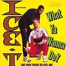 What Ya Wanna Do [Vinyl]