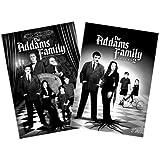The Addams Family - Volumes 1 & 2 ~ Arthur Lubin