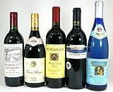 セレクション赤ワイン 白ワイン5本福袋セット(フランス赤2本 イタリア赤1本 スペイン赤1本 ドイツ白1本)750ml×5本
