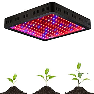 King Plus 1600w Double Chips LED Grow Light Full Specturm for Greenhouse and Indoor Plant Growing and Flowering(10w Leds)