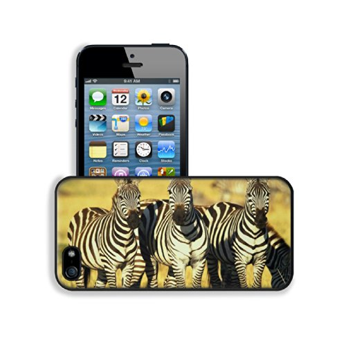 Animal Zebra Wildlife Calf Feeding Pattern Baby Africa Grassland Black White Apple Iphone 5 / 5S Snap Cover Premium Leather Design Back Plate Case Customized Made To Order Support Ready 5 Inch (126Mm) X 2 3/8 Inch (61Mm) X 3/8 Inch (10Mm) Luxlady Iphone_5 front-893670