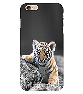 CUTE TIGER Designer Back Case Cover for Apple iPhone 6 Plus