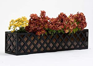 24 Inch Lattice Window Box Cage with Bronze Tone Liner