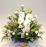 花工房花贈りエーデルワイス フラワーギフト お供えアレンジメントデザイナーズチョイス〔おまかせ〕