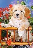 Puzzle 60 Teile - Hund - Welpe mit Blumen - Kinderpuzzle für Kinder - Hunde Tiere Tierkinder Tier