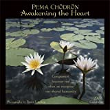 Pema Chodron: Awakening the Heart (1569377839) by Pema Chodron