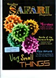 img - for Very Small Things (Reading Safari Magazine, Level U/V) book / textbook / text book