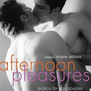 Afternoon Pleasures: Erotica for Gay Couples | [Shane Allison (editor)]