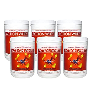 Action Whey Protein Shake - Chocolate (6 Pack)