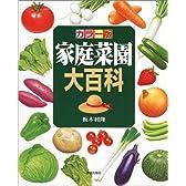 カラー版 家庭菜園大百科