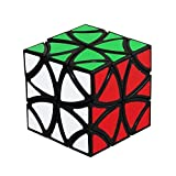 Butterfly Magic Speed Cube Puzzles, ABS Ultra-smooth Master Twist Cube, Brain Teaser Toys & Christmas Birthday Gifts by YKL WORLD (Black) (Color: Black)