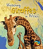 Watching Giraffes in Africa (Wild World)