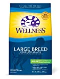 Wellness Large Breed Complete Health Recipe, 15-Pound Bag