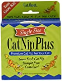Cat-A'bout Single-Cat CatNip Plus Tub 250 milligrams by MiracleCorp/Gimborn