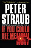 Peter Straub If You Could See ME Now