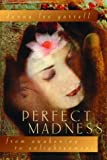 Perfect Madness: From Awakening to Enlightenment