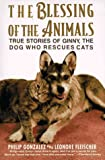 The Blessing of the Animals: The True Story of Ginny, the Dog Who Rescues Cats