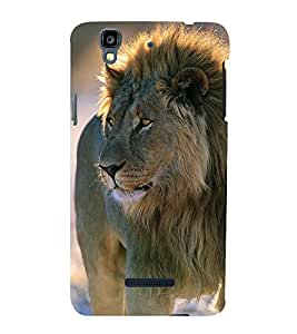 Lion in Jungle 3D Hard Polycarbonate Designer Back Case Cover for YU Yureka :: YU Yureka AO5510