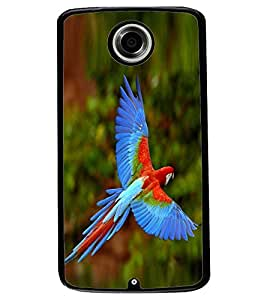 ColourCraft Beautiful Parrot Design Back Case Cover for MOTOROLA GOOGLE NEXUS 6